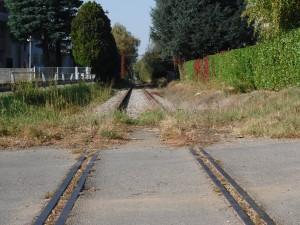 Pedalata 12 novembre 2017 ex ferrovia Saronno Seregno