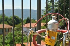 Mangia Bevi e Bici 2018: sapori del territorio