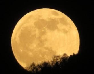 no luna
